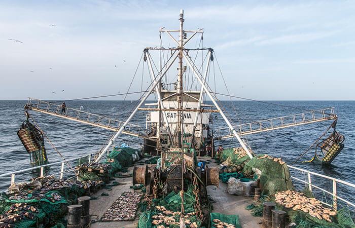Fangflotte vor der Küste Senegals