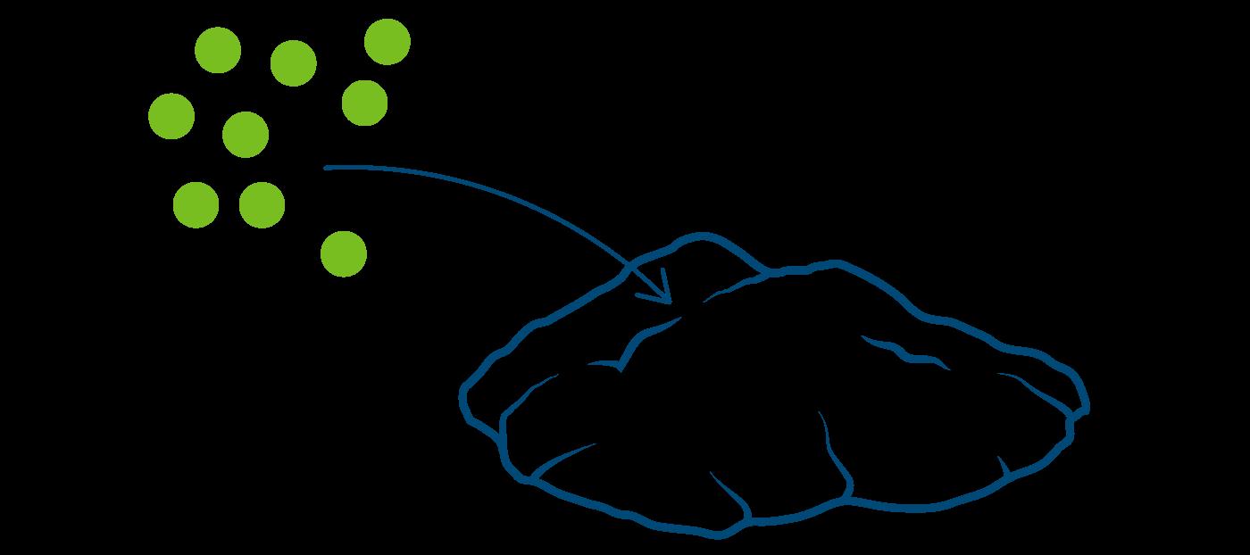 Hinzugabe von Methylcellulose zur Proteinmasse